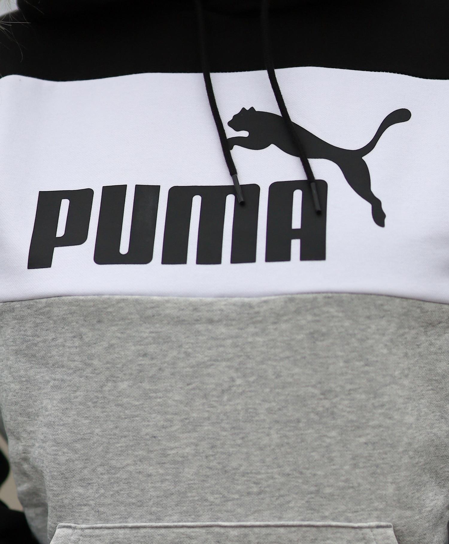 Puma Colorblock Hoodie